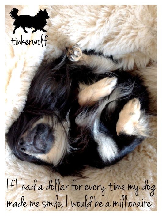 tinkerwolf dog photo quotes 21 My dog made me smile