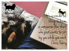tinkerwolf dog photo quotes 32 Its a wonderful thing