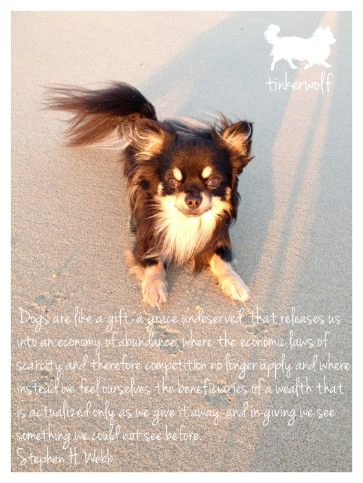 tinkerwolf dog photo quotes 40 Dogs are like a gift
