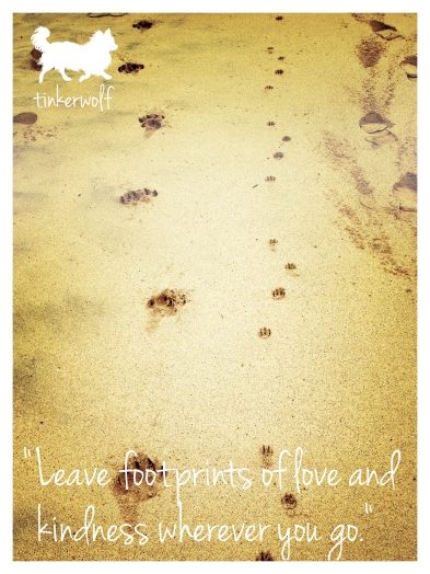 tinkerwolf dog photo quotes 54 Leave footprints of love