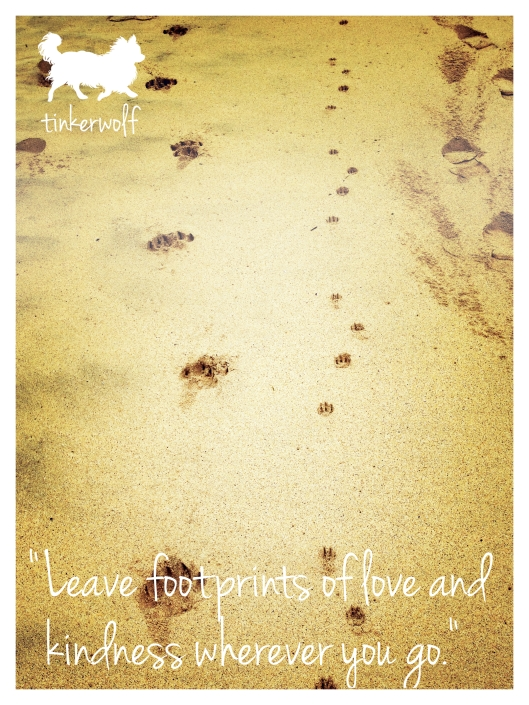 tinkerwolf dog photo quotes 54 Leave footprints of love.jpg