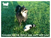 tinkerwolf dog photo quotes 71 Chidren are for people who can't have dogs
