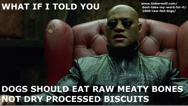What if I told you ...