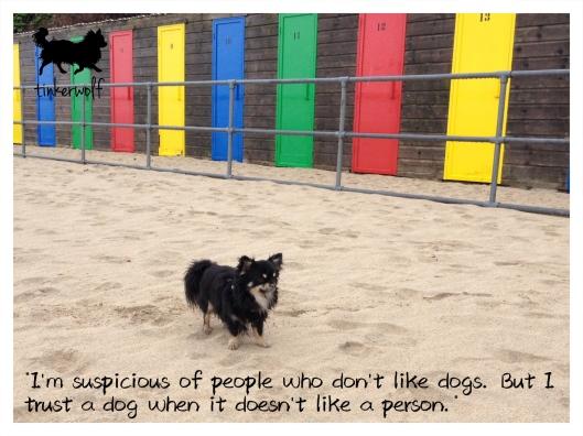 tinkerwolf dog photo quotes 81 I trust a dog.jpg