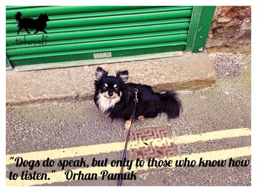 tinkerwolf-dog-photo-quotes-83-dogs-do-speak